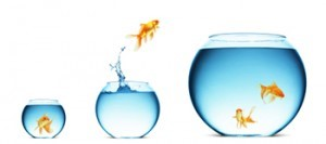 formation-action-developpement-personnel-professionnel-axelys-conseil