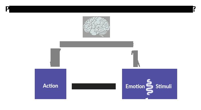 schema-intelligence-emotionnelle-axelys-conseil-sarthe